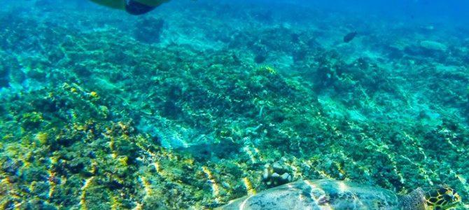 6 Reasons to Plan a Romantic Getaway to the Gili Islands